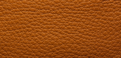 Anilin Leather Cognac 425